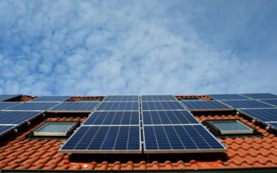 Solar Panel Review of Top Brands for the New Year